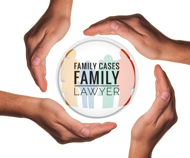 Family Cases/ Family Lawyer